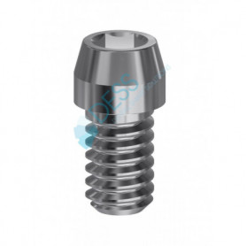 Vite Hex in Titanio per Uniabutment 1,27 mm compatibile Astra Tech Implant System™ EV