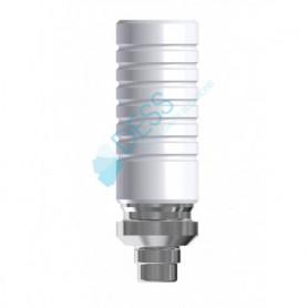 Calcinabili Base CoCr Round compatibile Friadent® Xive®