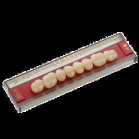 Denti posteriori - Trilux  - Ormocer - Sconti su quantità